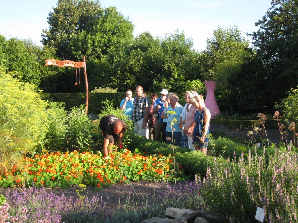 botanische tuin de kruidhof in buitenpost